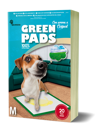 green-pads-mockup-servimarket-ecuador