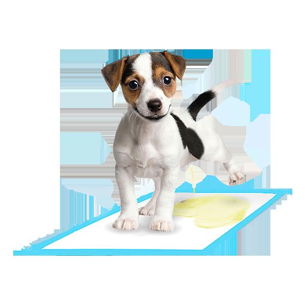 pigaro-pads-almohadillas-para-perros---servimarket-ecuador